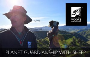 thumbnail of Planet_guardianship_with_sheep_Steven_Parsons_Wools_of_New_Zealand